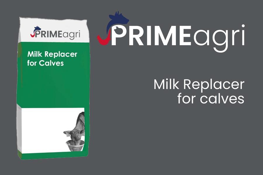 Calf Milk Replacers