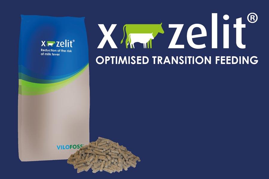 X-Zelit® Feed